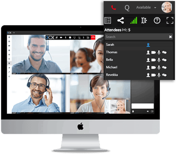 ip telephony video conferencing